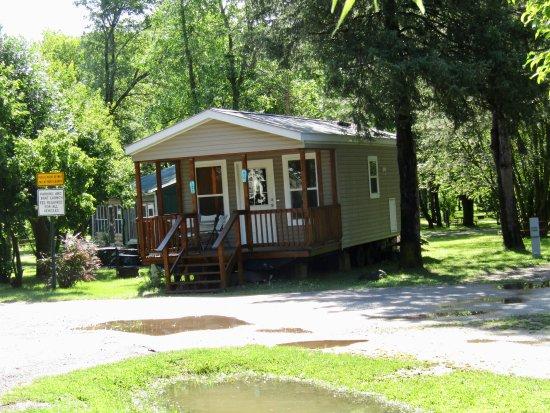 Lyndon Station, WI: Cabin