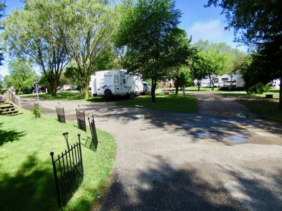 River Bay Campground & Marina: Site