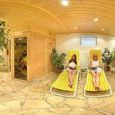 Spalt, Германия: sauna - steam bath