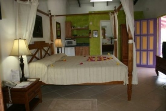 True Blue Bay Boutique Resort: Tree Top Room