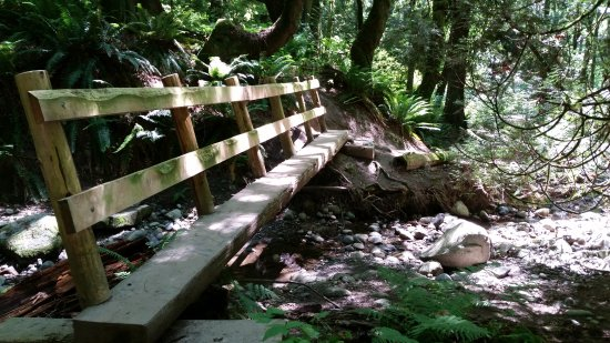 Kirkland, WA: Several foot bridges cross the creek.
