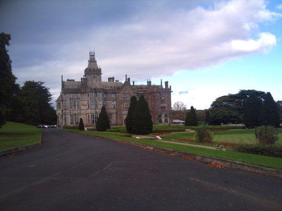 Obraz Adare Manor