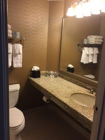Sheraton Suites Wilmington Downtown: Bathroom Needs Updating