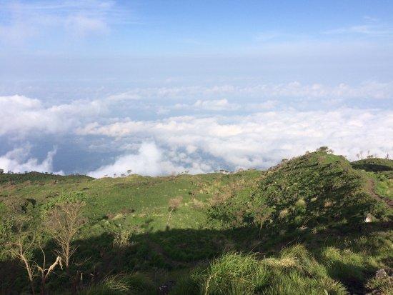 Buea, Cameroon: photo5.jpg