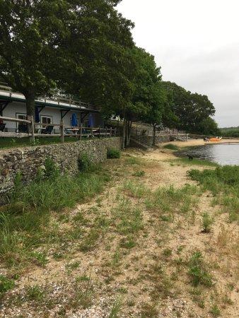 Green Harbor Waterfront Lodging : Quelques chiens en plastique montent la garde sur la plage privée et table extérieure pour chaqu