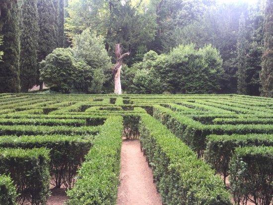 Picture of palazzo giardino giusti verona for Giardino e palazzo giusti