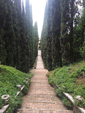 Palazzo giardino giusti verona italy top tips before for Giardino e palazzo giusti