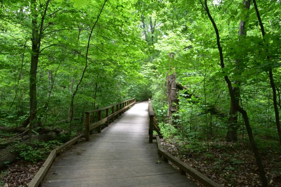 Westerville, OH: On one of the trails in Inniswood Metro Gardens