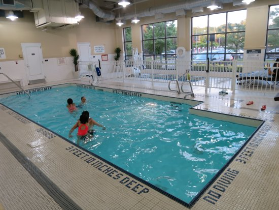Sheraton Tarrytown Hotel: indoor pool - room key needed for access