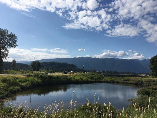 Pitt Meadows, Kanada: photo1.jpg