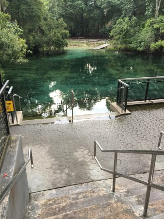 Chiefland, FL: Manatee Springs State Park