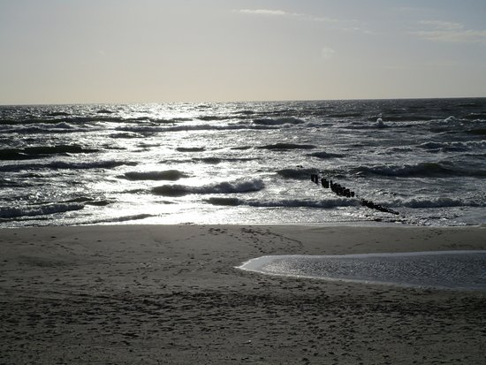 Nida, Lithuania: From the beach that stretches throughout the park