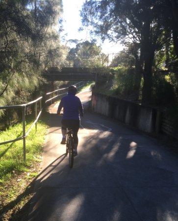 Wollongong, Australia: Beautiful pathways with sun and shade