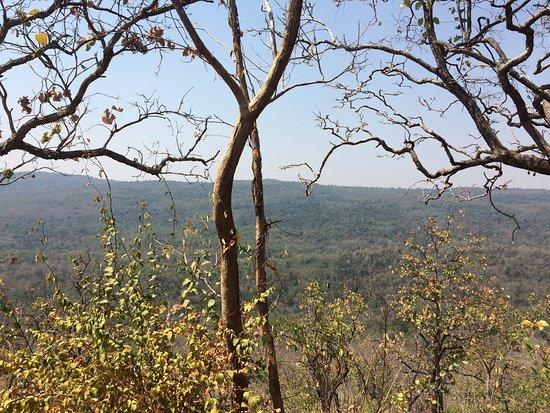 Phu Faek Forest Park: photo5.jpg