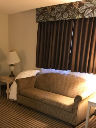 Quality Inn & Suites: Living area w sofa sleeper