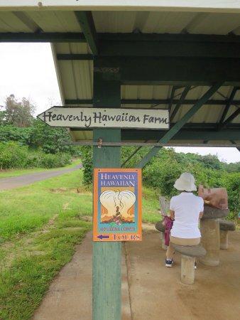 Holualoa, ฮาวาย: photo0.jpg