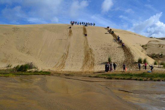 Paihia, Selandia Baru: Sandboarding