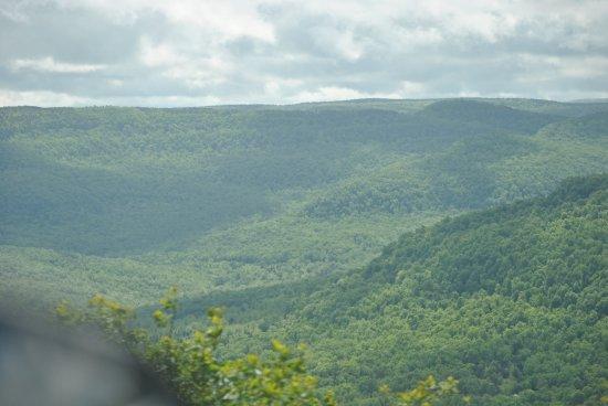 Jasper, AR: View from the Top, Scenic Overlook, Mt Judea