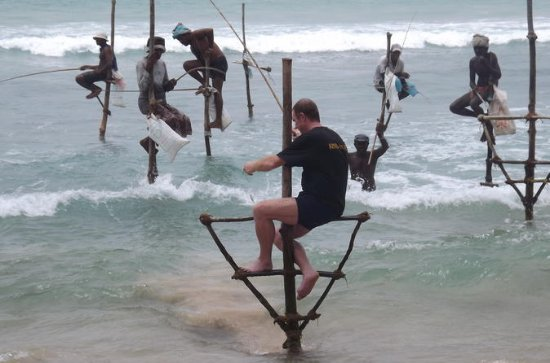 Visit Galle fort and stilt fishing