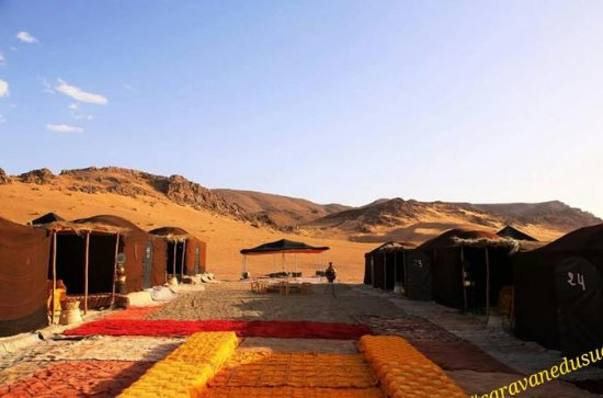 Tour de chameau dans le désert de...
