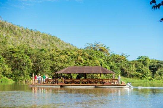 Isla Saona Deluxe- Río Chavón y...