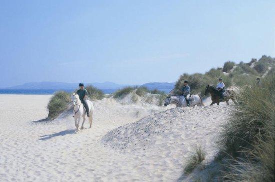 Excursion guidée à cheval sur la...