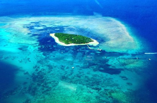 Private Scenic Flight Reef and Rainforest Tour