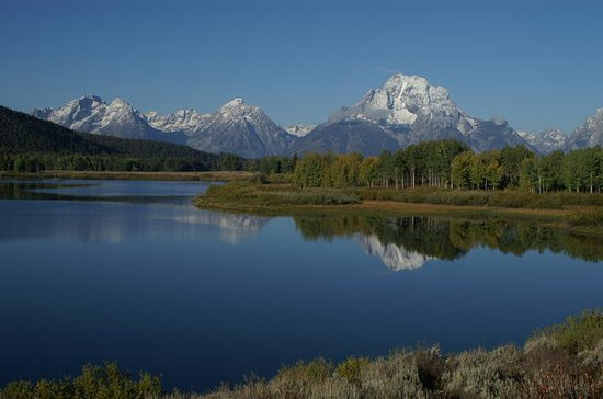 Grand Teton Wildlife Tour