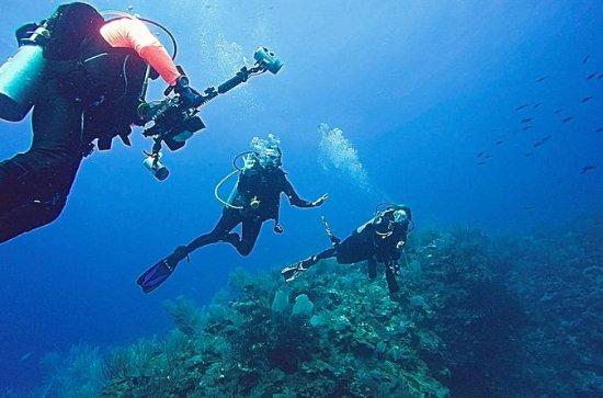 Tour guiado de mergulho em terra