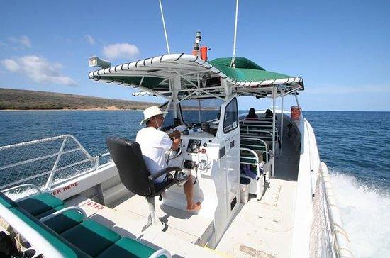 Kaanapali Ocean Adventures  - Sanity...