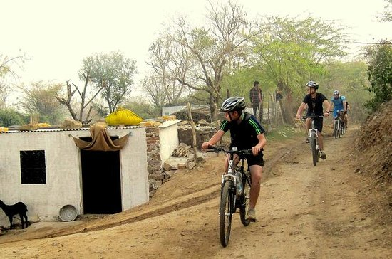 Jaipur Village Cycling Safari