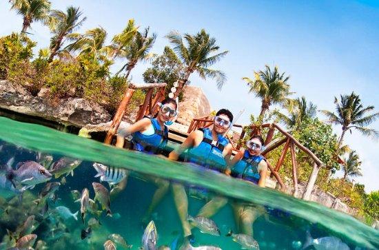 De Playa del Carmen: Premier accès à...