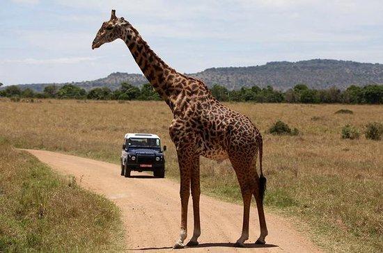 7-tägige Maasai Mara Lake Nakuru...