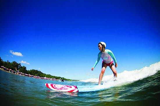 Surfing Level 1 Beach Surfer