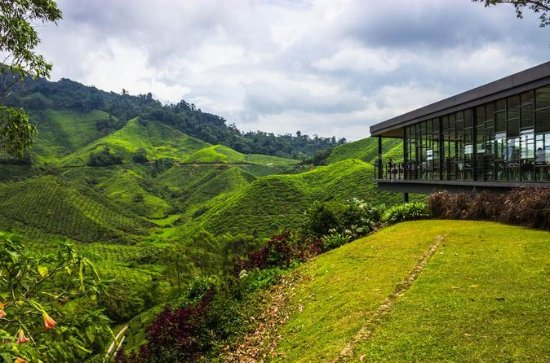 2D1N Cameron Highlands og Nature Tour...