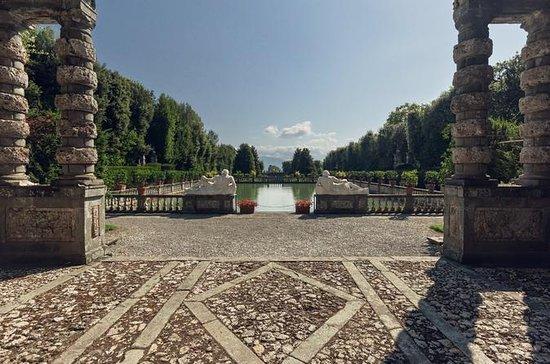 Rediscovered Gardens of Elisa...