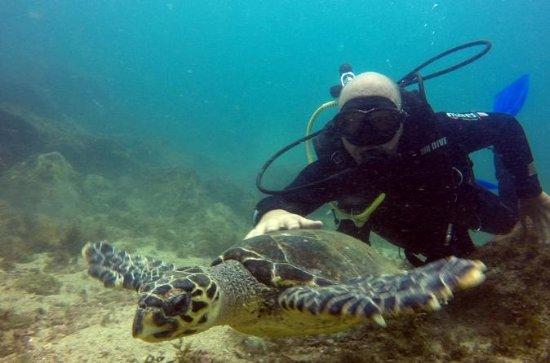 Excursion de plongée sous-marine à...