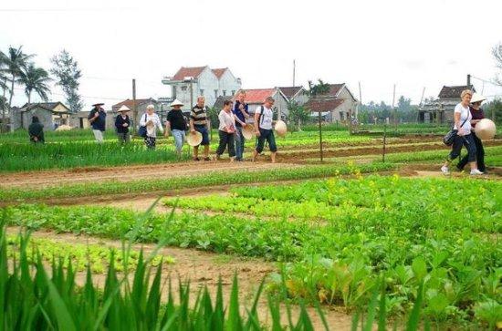 農業経験ベトナム伝統料理教室