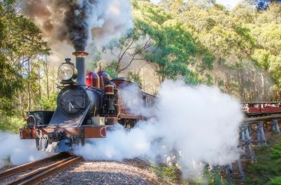 Puffing Billy et Mount Dandenong Tour...