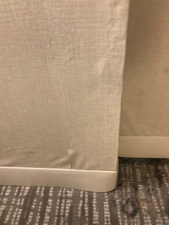 Embassy Suites by Hilton Indianapolis - North: Black mold & water damage on 8th floor