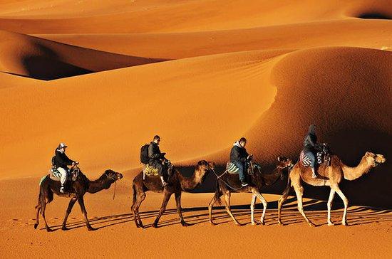4 dias Fez para Marrakech via Desert...