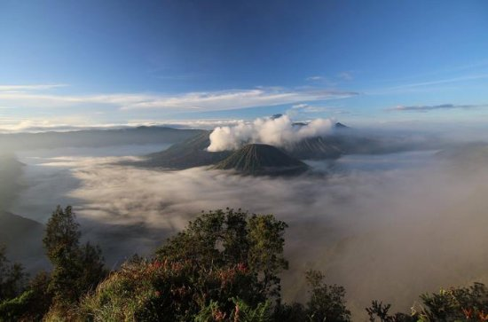 Bromo Sunrise Direct Tours