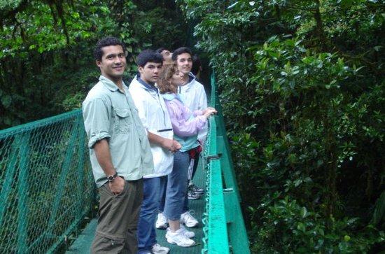 モンテベルデ雲の森ツアー