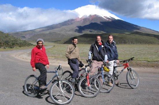 Cotopaxi自転車