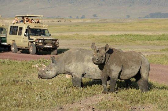 2-Day Short Safari to Tarangire and...