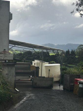 Warkworth, Yeni Zelanda: photo3.jpg