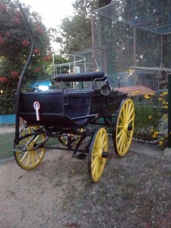 Villefranche-sur-Saone, France: Atypique cette carriole !