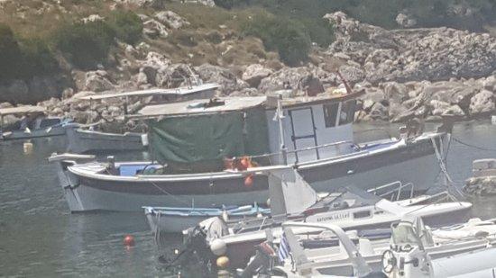 Zola, Greece: IMG-20170712-WA0033_large.jpg