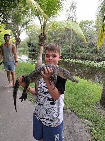 Miami, FL: They take tips to hold a baby gator