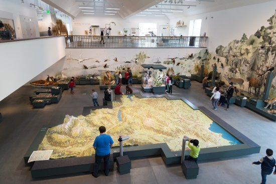 Naturmuseum St Gallen